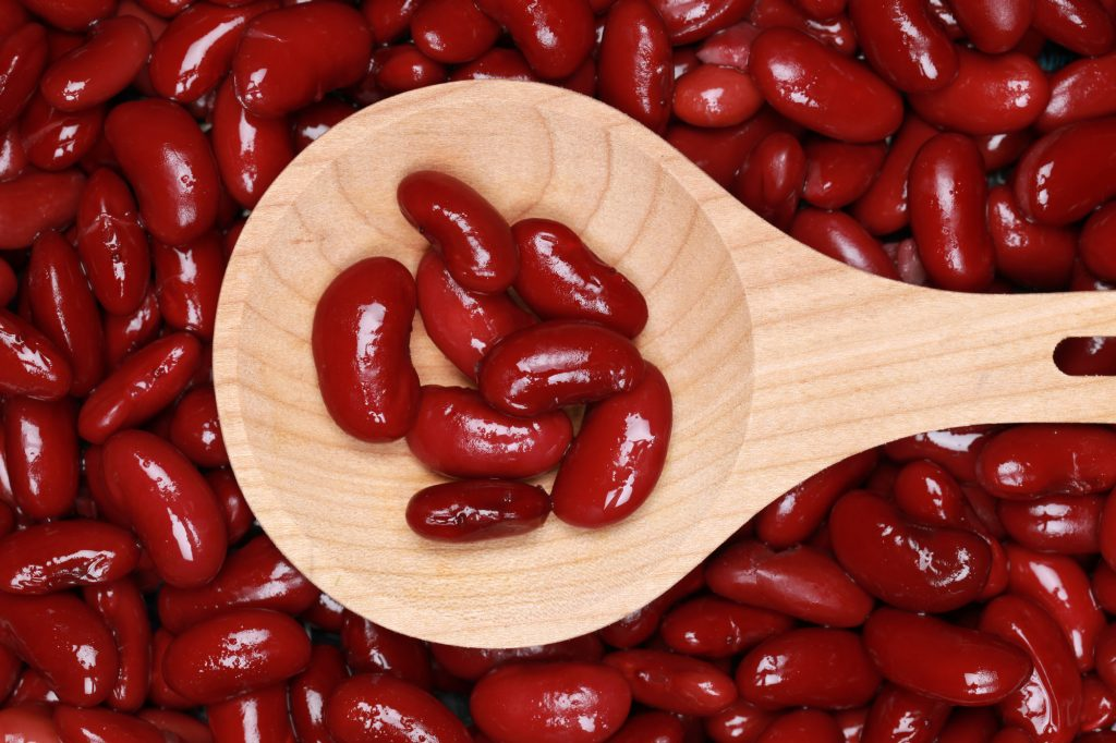 Can Dogs Eat Kidney Beans Barkspace